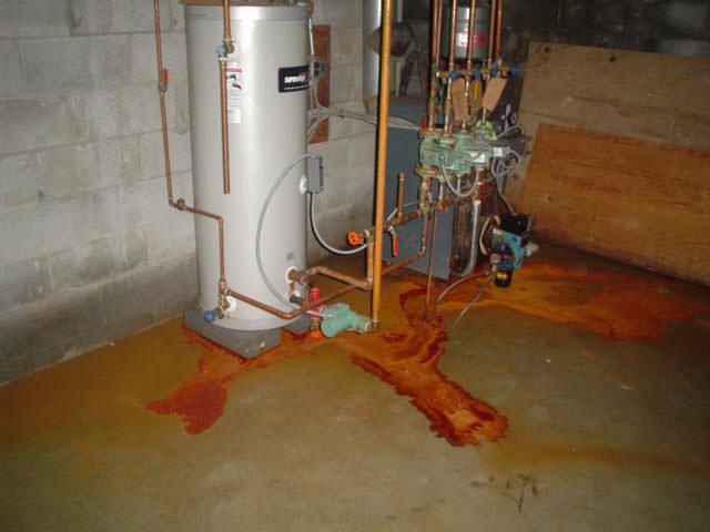 Iron Bacteria Iron Ochre In Wet Basements